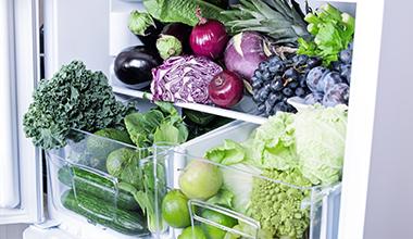 vegan fridge/freezer category